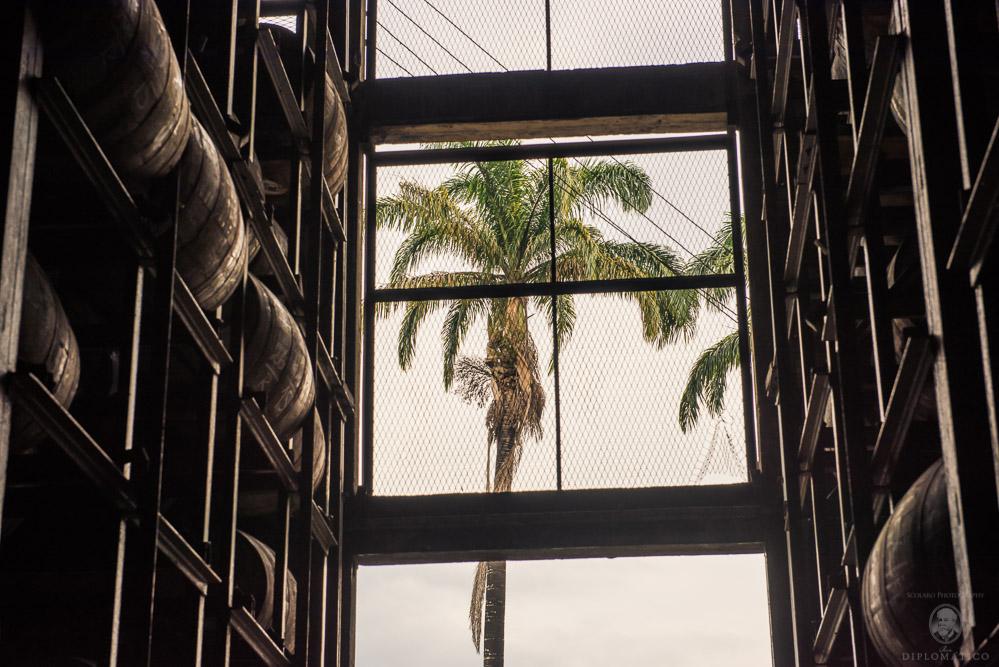 Warehouse at DUSA